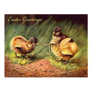Ostern-Küken-Wurm-Gras Postkarte