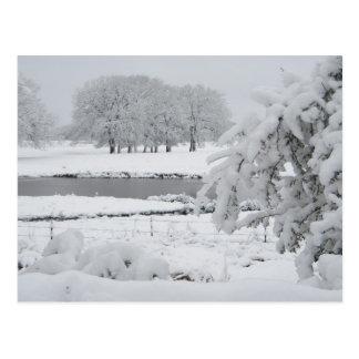 Osttexas-Winter, 2009 Postkarte