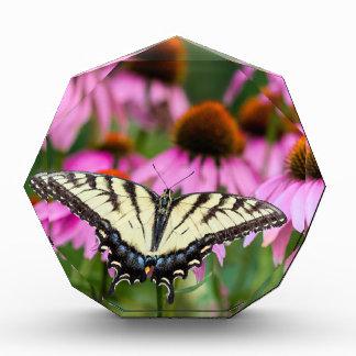 Osttiger-Frack-Schmetterling auf Coneflowers Acryl Auszeichnung