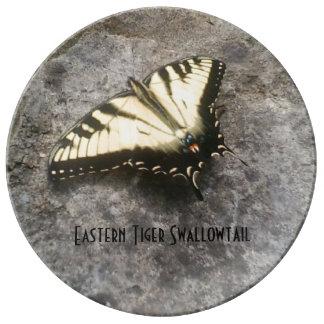 Osttiger-Frack-Schmetterling Teller