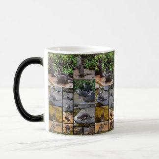 Otter-Foto-Collage, Magie verwandeln Becher Verwandlungstasse
