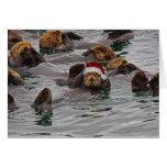 Otter-Sankt-Weihnachtskarte Grußkarten