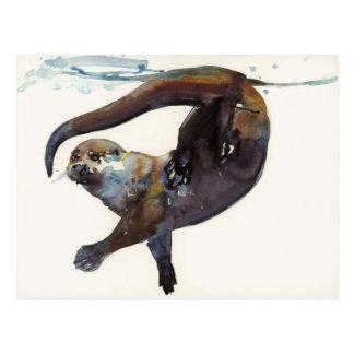 Otter-Studie II - 'Talisker Postkarte