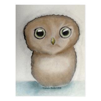Owlie Postkarte