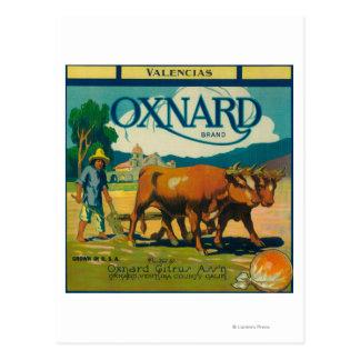 Oxnard orange LabelOxnard, CA Postkarte