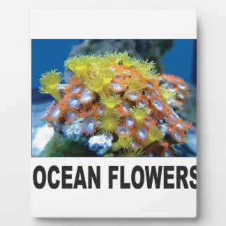 Ozean-Blumen Fotoplatte