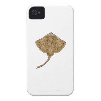 Ozean-Schieber iPhone 4 Hüllen