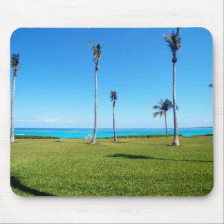 Ozean-und Palmen-Landschaft Mousepads