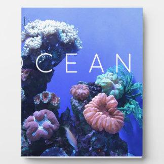 Ozeanumwelt Fotoplatte