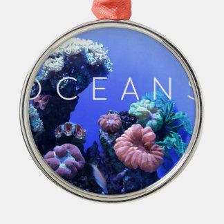 Ozeanumwelt Silbernes Ornament