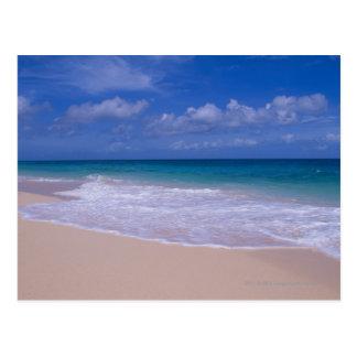 Ozeanwellen, die auf sandigen Strand schäumen Postkarte