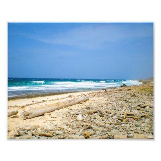 Ozeanwellen setzen mit Treibholz, karibischer Fotodruck
