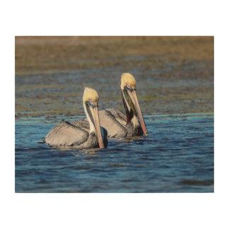 Paare 14x11 Pelikane Holzleinwand