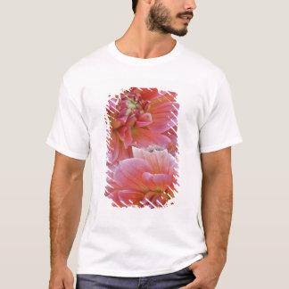 Paare Dahlie-Blumen, Dahlie spp. , T-Shirt
