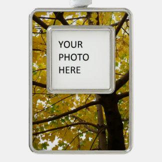 Paare der gelben Ahornbaum-Herbst-Natur Rahmen-Ornament Silber