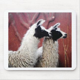 Paare Lamas Mousepad