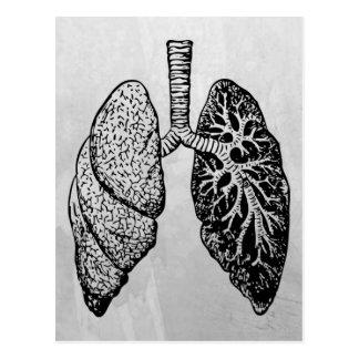 Paare Lungen Postkarte