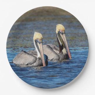 Paare Pelikane Pappteller