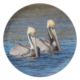 Paare Pelikane Teller