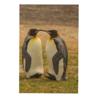 Paare von König Pinguine, Falkland Holzwanddeko