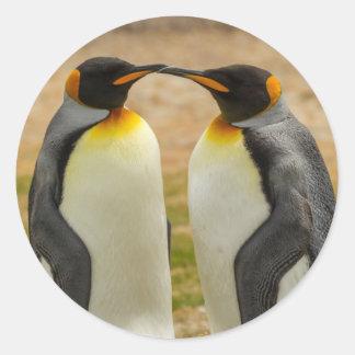 Paare von König Pinguine, Falkland Runder Aufkleber