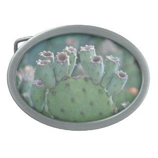 Paddel-Kaktus Ovale Gürtelschnallen