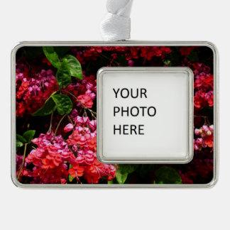 Pagoden-Blumen-buntes rotes und rosa Blumen Rahmen-Ornament Silber