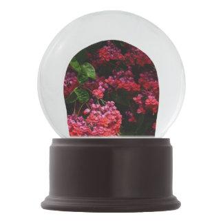 Pagoden-Blumen-buntes rotes und rosa Blumen Schneekugel