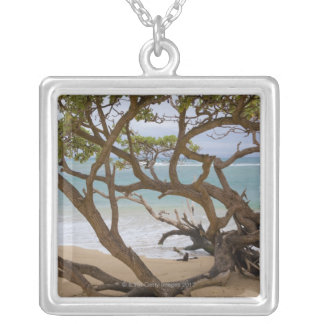 Paia Bucht-Strand, Maui, Hawaii, USA Versilberte Kette