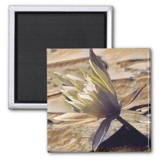 Painterly Wasserlilie-Magnet Quadratischer Magnet