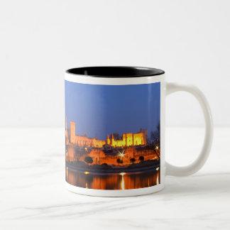 Palace Papstes in Avignon und in der Rhone an Zweifarbige Tasse