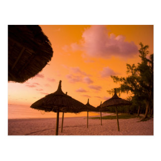 Palapa Art-Strandhütten am Sonnenaufgang, Postkarte