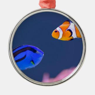Palettensurgeonfish- und -clownfischschwimmen rundes silberfarbenes ornament