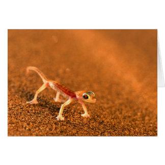 Palmatogecko auf Sanddüne, Swakpomund, Erongo Karte