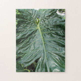 Palmblatt historisches Bok arbeitet botanisches Puzzle