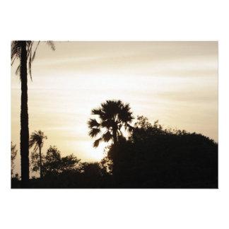 Palme am Sonnenuntergang Ankündigungskarte