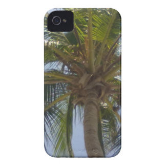 Palme-BlackBerry-mutiger Kasten iPhone 4 Case-Mate Hülle