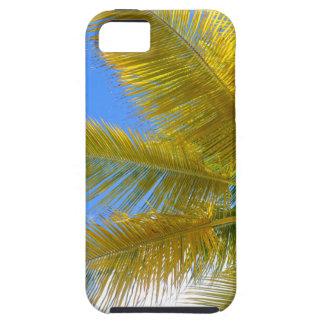 Palme iPhone 5 Schutzhülle