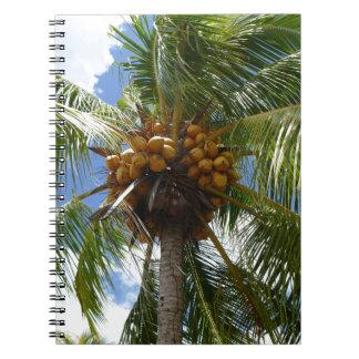 Palme mit Kokosnüssen Spiral Notizblock