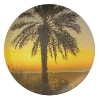 Palme-Sonnenaufgang Teller