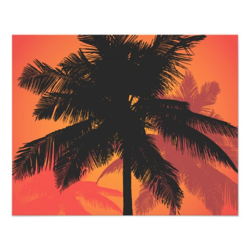 Palme-Sonnenuntergang-Silhouetten Photographie