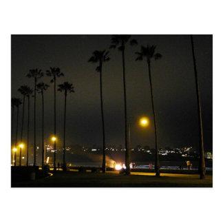 Palme-Strand-Nacht La Jolla Postkarte