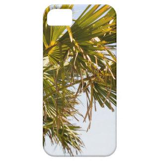 Palme von der Ostküste berühmtes Myrtle Beach Hülle Fürs iPhone 5
