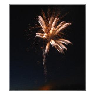 Palme wie weiße Feuerwerks-Explosion Fotodruck