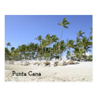 Palmen auf einem tropischen Strand Postkarte