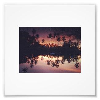 Palmen Fotodruck