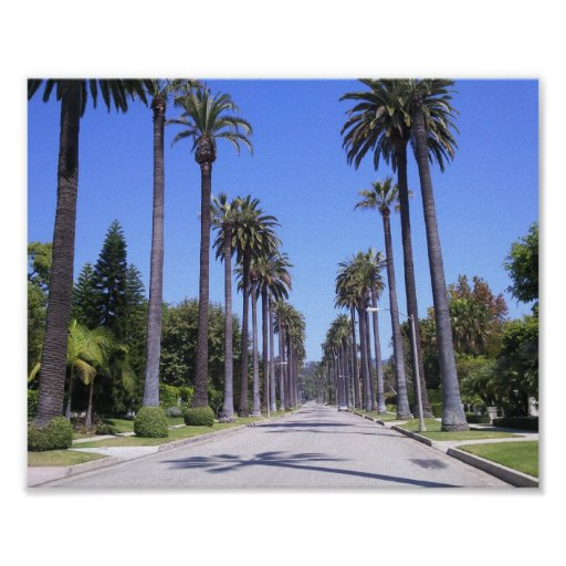Palmen in Los Angeles Plakat
