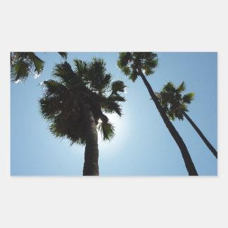 Palmen Los Angeles Hollywood USA Rechteckiger Aufkleber