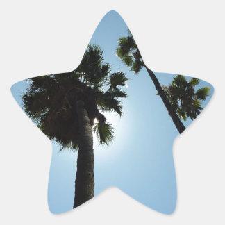 Palmen Los Angeles Hollywood USA Stern-Aufkleber