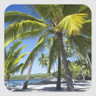 Palmen, nationaler historischer Park Pu'uhonua O Quadratischer Aufkleber